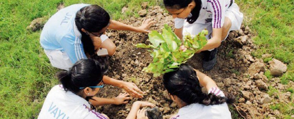 A School in India Is Asking Parents to Plant a Tree ...