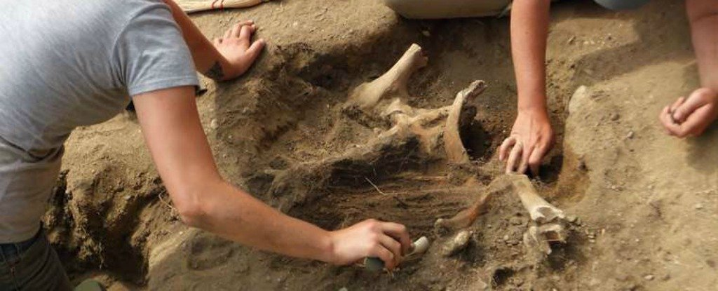 Archaeologists Think They've Found The Pilgrims' Original 1620 Plymouth Settlement