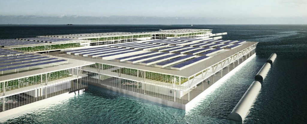 This Giant Floating Farm Could Produce Almost 10 Tonnes of Food Each Year