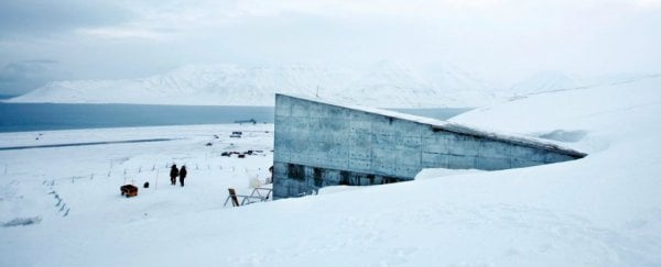 Here's what it looks like inside the frozen Svalbard 'doomsday vault'