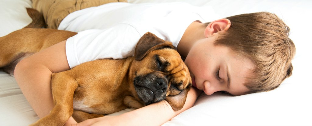 Sleeping With Your Pet Could Help You Get a Better Night's Rest