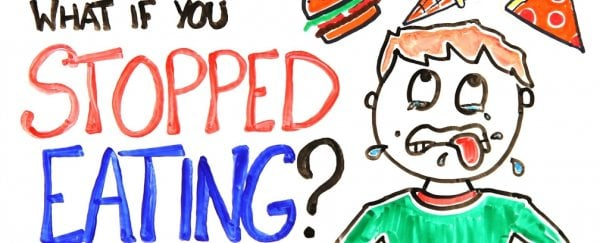 Watch: What Would Happen if You Stopped Eating?