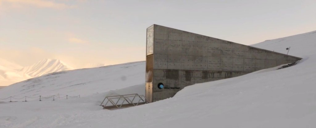 Watch Take A Tour Inside Svalbard S Frozen Doomsday Seed Vault