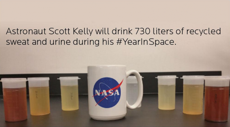 Astronaut scott kelly will drink 730 litres of his own for Cocktail urine