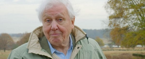 "Sir David Attenborough has admitted he's ""coming to terms"" with memory loss"
