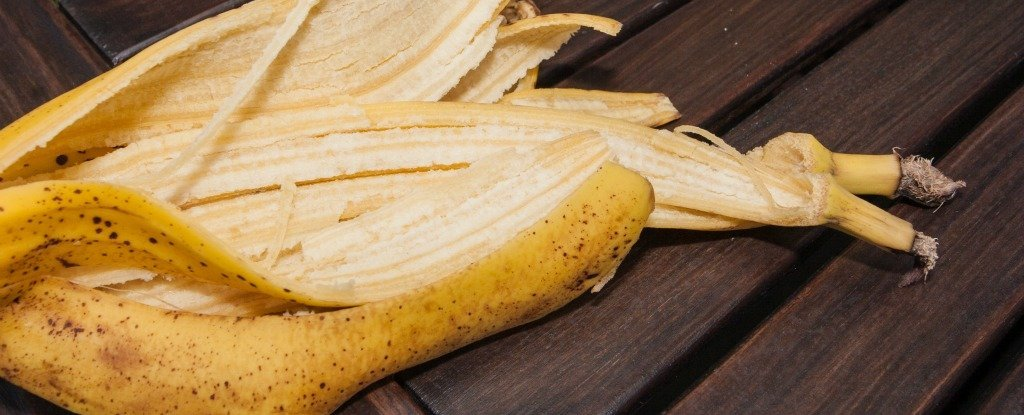 Banana Peel Is Just as Nutritious as The Flesh