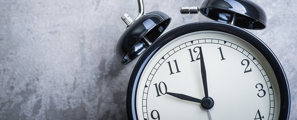 Scientists Find The 'Brain Clock' That Keeps Our Memories Ticking