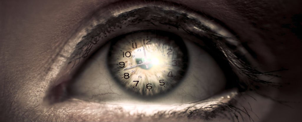 This Internal 'Master Clock' Could Be in Control of All Our Circadian Rhythms