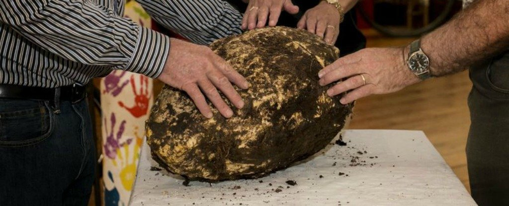 An Irish Worker Just Found a 2,000-Year-Old Lump of 'Bog Butter' That's Still Edible