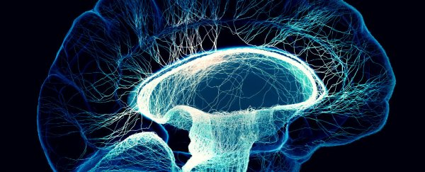 New Mathematical Model Shows How Our Brains Make Complex