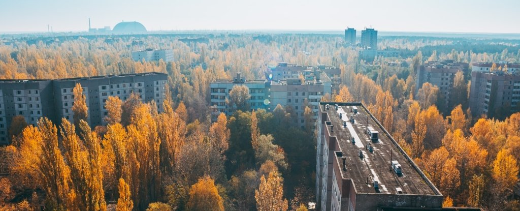 New Analysis Says We Were Wrong About What Caused The Chernobyl Disaster