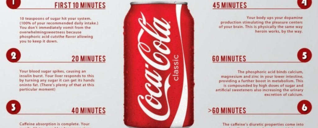 Top 5 Companies Owned By Coca Cola (KO)