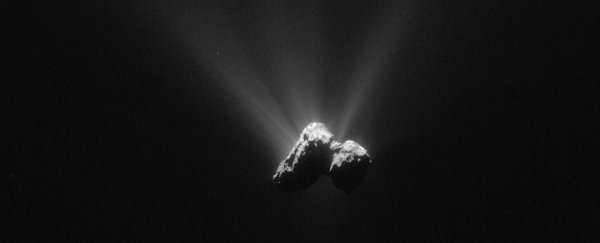 Key ingredients of life have been detected in Comet 67P's atmosphere