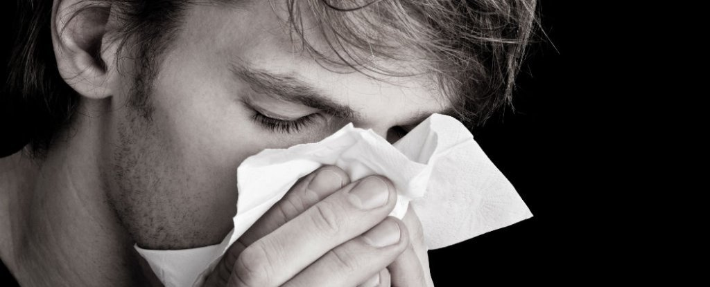 Scientists Have Figured Out How to Stop The Common Cold in Its Tracks