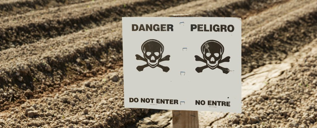 WATCH: 5 of The World's Most Dangerous Chemicals