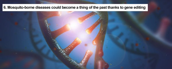 9 amazing things we've achieved in 2017 with help from CRISPR