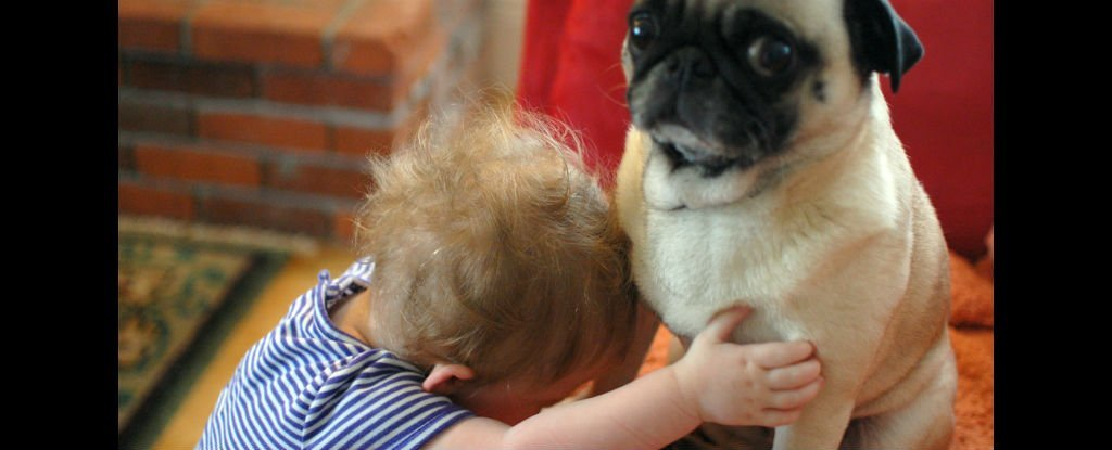 You Need to Stop Hugging Your Dog, Study Finds