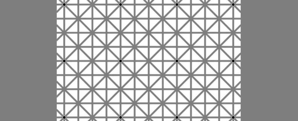 Here's Why You Can't See All 12 Black Dots in This Crazy Optical Illusion