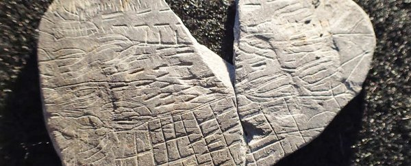 This 5,000-Year-Old Rock Could Be One of The World's ... on oldest south american pyramid, oldest rocks in colorado, oldest rocks on earth,