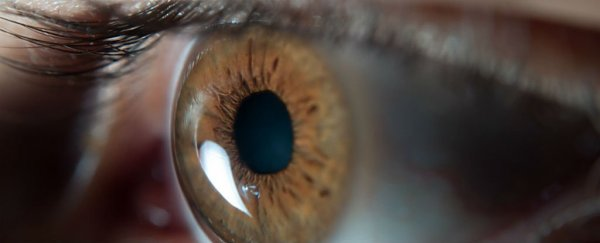 Scientists have reversed age-related blindness by deliberately infecting eyes with a virus