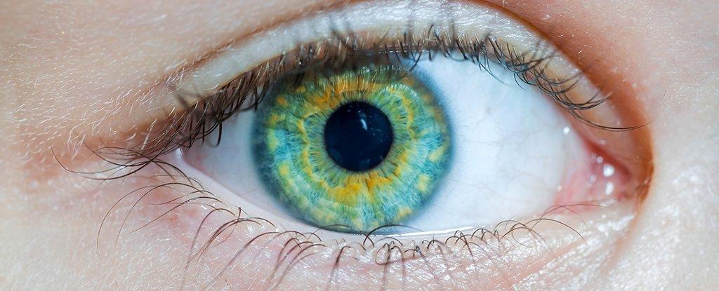 Eye contact 1024