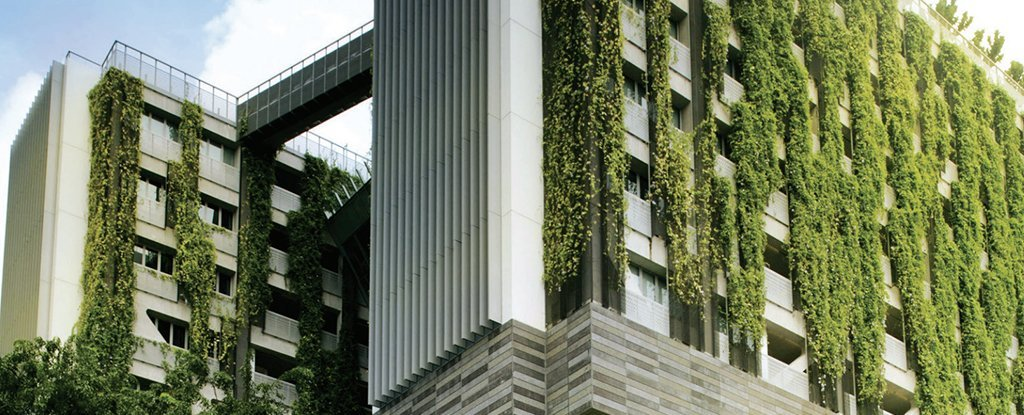 This is why we should all be covering all our buildings with plants