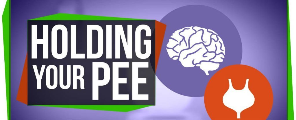 Here's What Happens to Your Body When You Hold in Your Pee