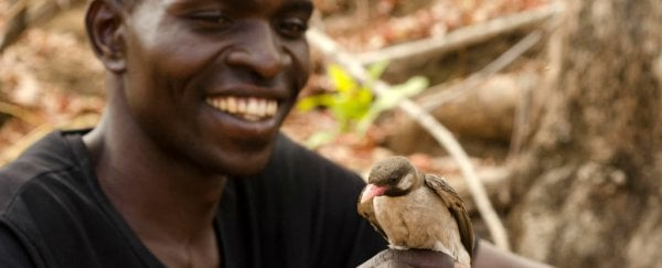 Scientists Document Wild Birds 'Talking' With Humans For The