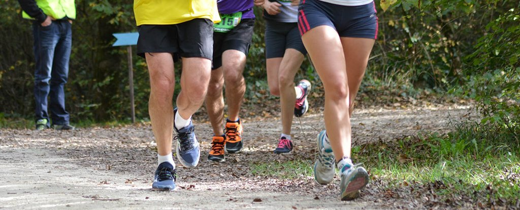 Runners And Musicians Have Better-Connected Brains Than The Rest of Us