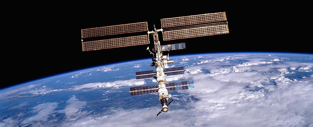 Microgravity Can Permanently Mutate Bacteria to Make Them ...