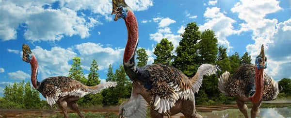 The newest dinosaur to be discovered looks just like a modern-day bird