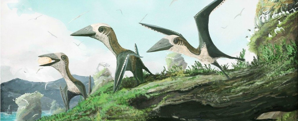 New Fossil Shows Birds And Pterosaurs Flew Side-by-Side