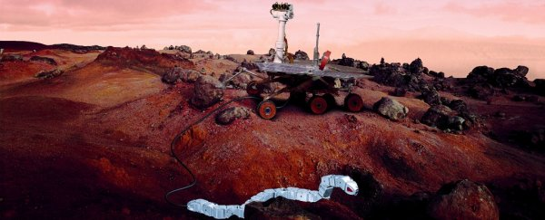 Snake rovers might take us below the Martian surface