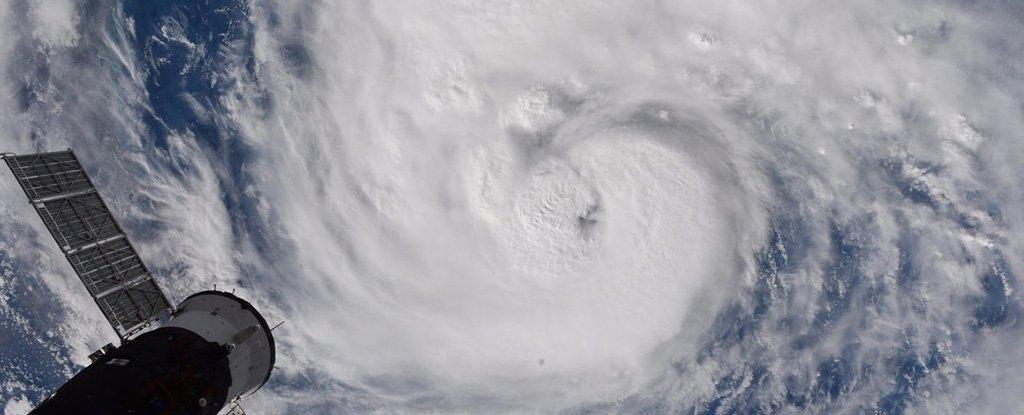 UPDATES ~ Hurricane Harvey -1000 year storm  Randy-bresnik-twitter-hurricane-harvey_1024