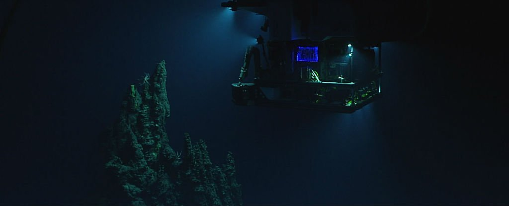 Scientists Have Identified That Mysterious, Metallic Sound Coming From The Mariana Trench