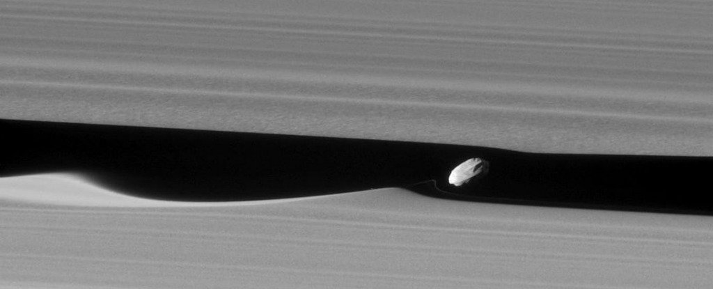 This Is The Closest-Ever Photo of a Moonlet Hiding in Saturn's Rings