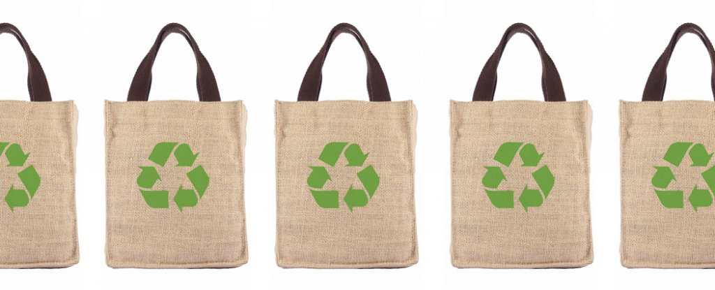 Eco-friendly shopping bags make us buy more junk food, study finds ...