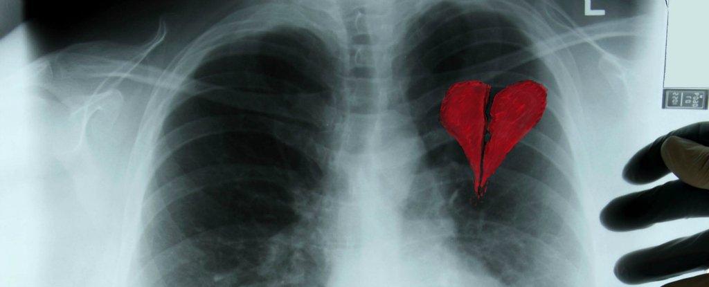 Human Heart Nature Facebook