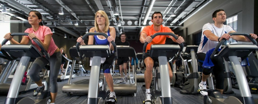 Scientists Have Discovered Why High-Intensity Interval Training Is So Effective