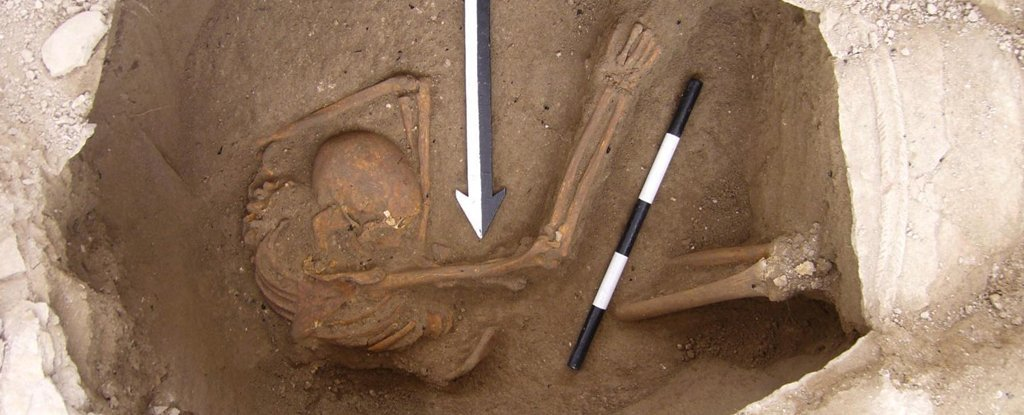 DNA Analysis Has Solved The Mystery of Whether Canaanite Descendants Live On