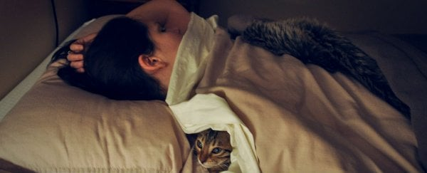 4 Things You Can Actually Learn While You Sleep