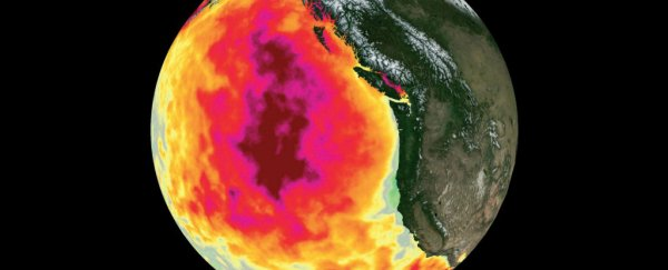 A massive 'blob' of abnormal conditions in the Pacific has increased ozone levels