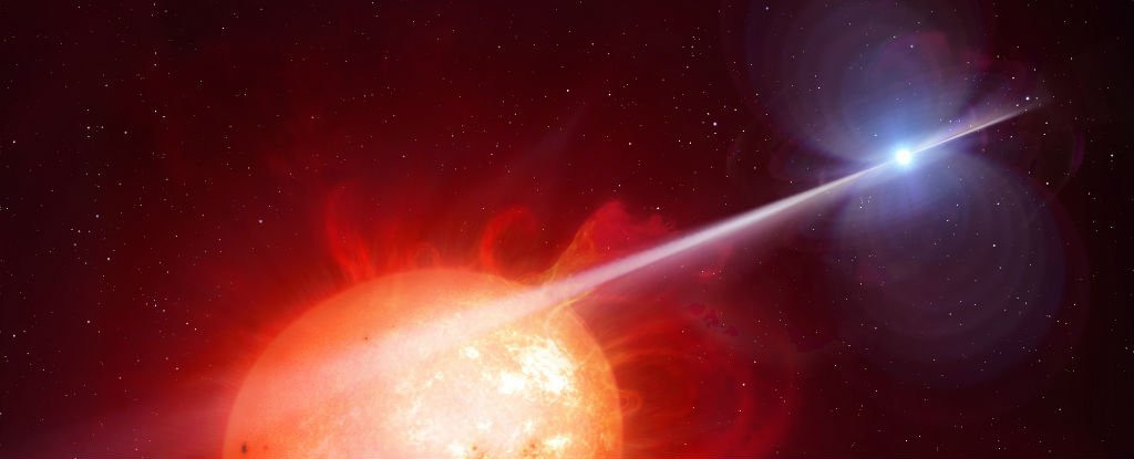 The First White Dwarf Pulsar in The Universe Has Been Found After Half a Century