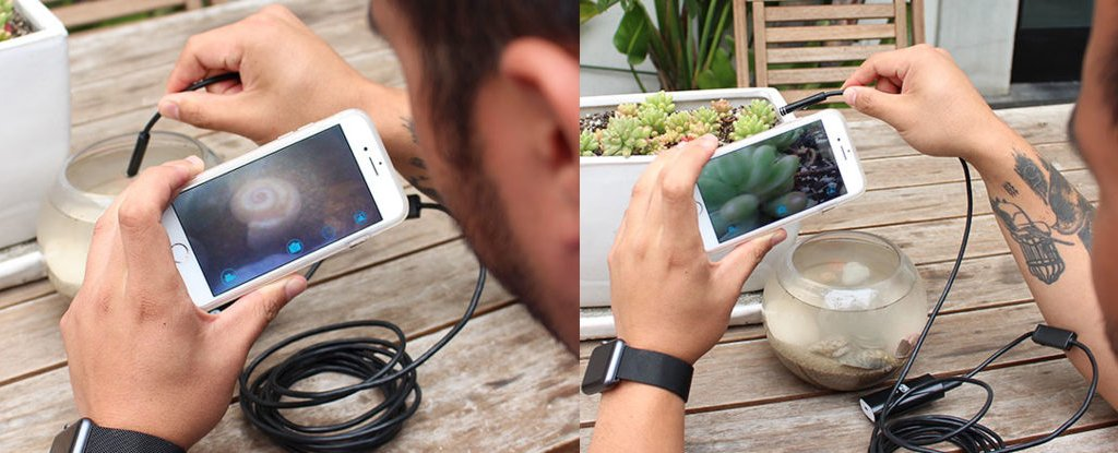 ScienceAlert Deal: See Into Tight Spaces With This WiFi Endoscopic Camera