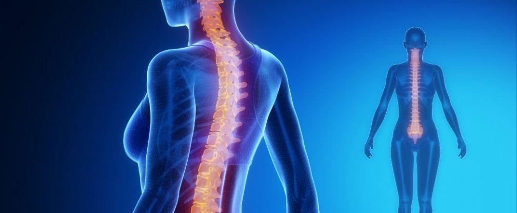 Defining acute mild head injury in adults