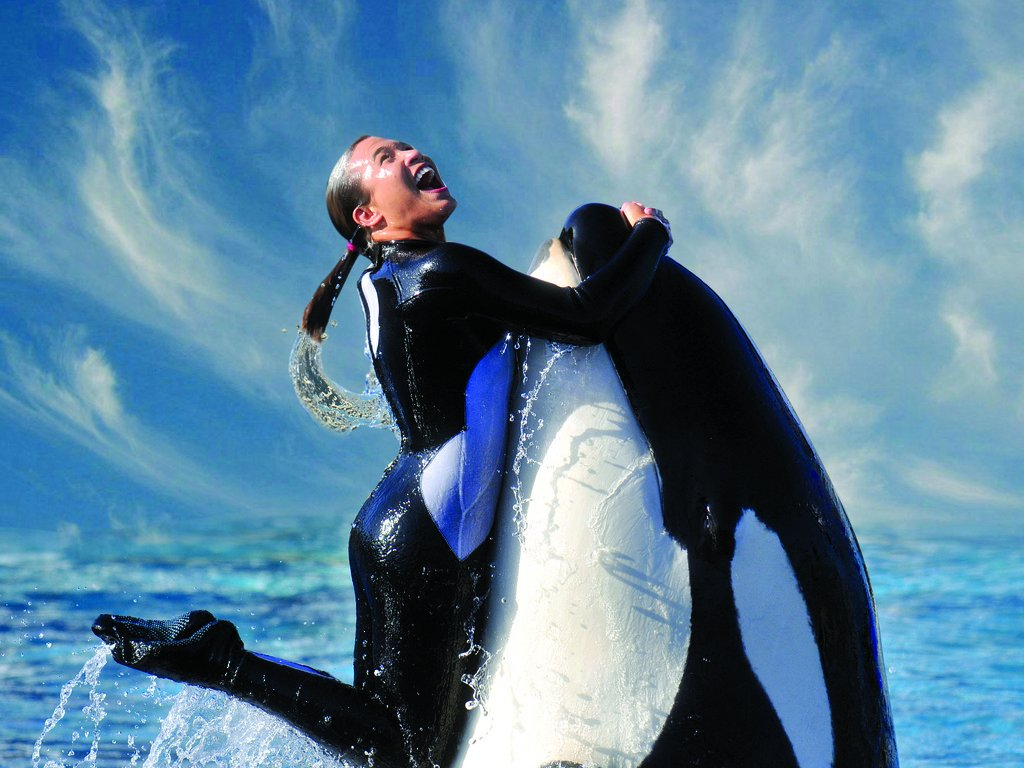 but-that-wasnt-enough-for-the-state-of-california-which-imposed-a-ban-on-breeding-orcas-at-seaworlds-san-diego-park-sea-world-challenged-that-ban-but-later-announced-it-would-close-its-orca-show-in-san-diego-by-2017