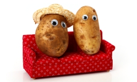 CHRISsadowski_-_couch_potatoes