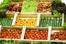 Big kudos! British grocery store is using its food waste to generate energy